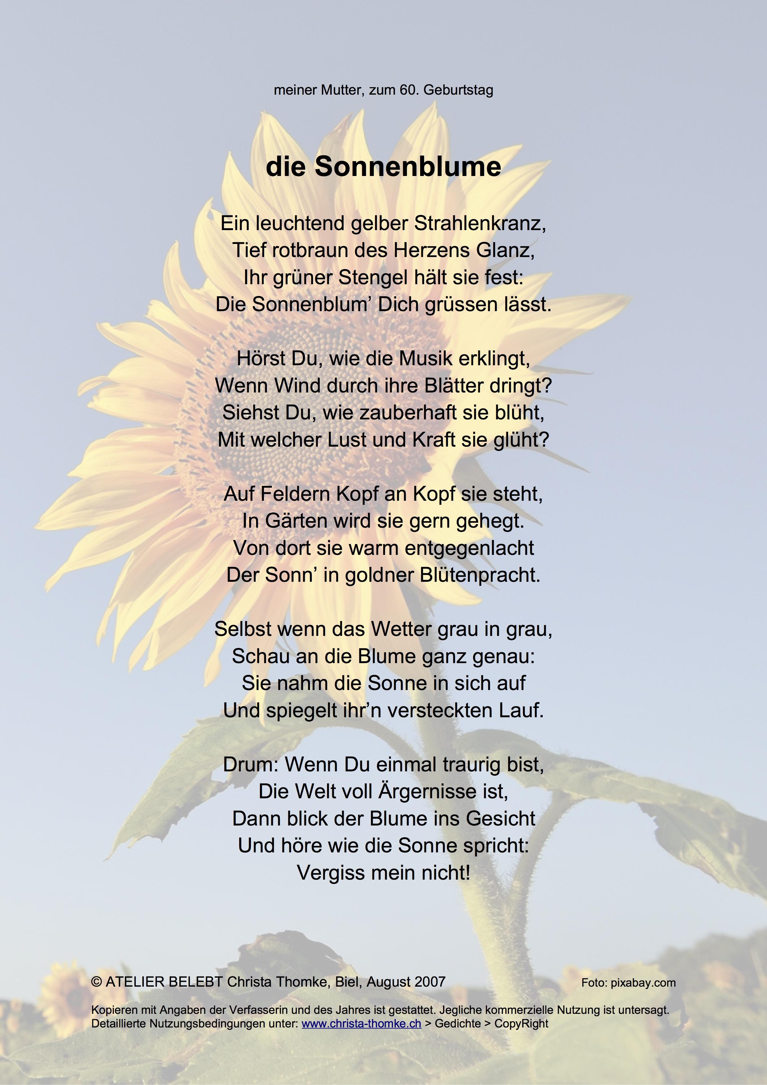 die Sonnenblume / @ Christa Thomke